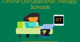Online OT schools