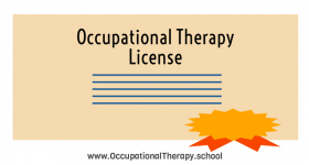 Occupational therapy license