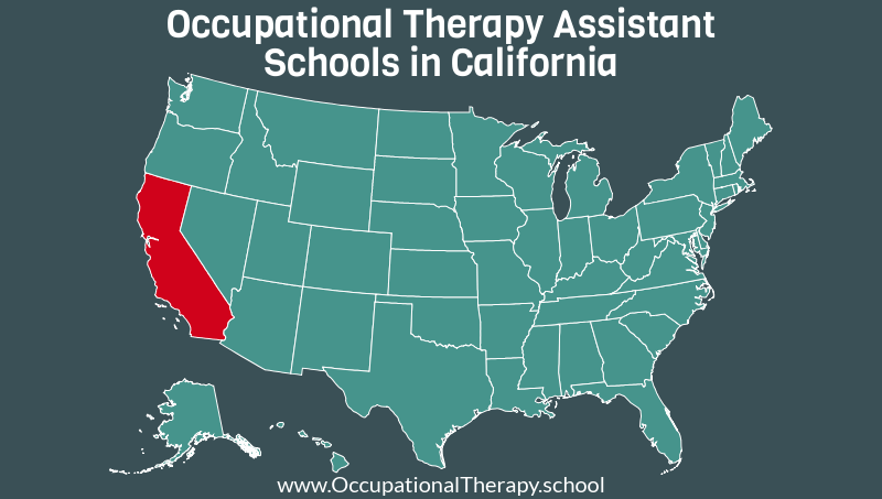 Occupational Therapy Schools In California >> Top Occupational Therapy Assistant Schools In California 2019 Ot
