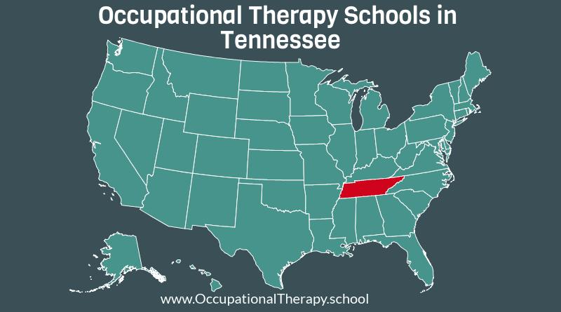 OT schools in Tennessee